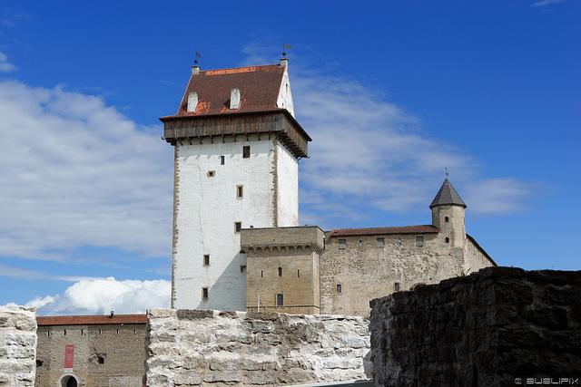 Hermann-Festung, Burg Narva (© Buelipix)
