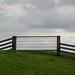 20140907 4782VRAw [NL] Viehgatter, Deich, Terschelling