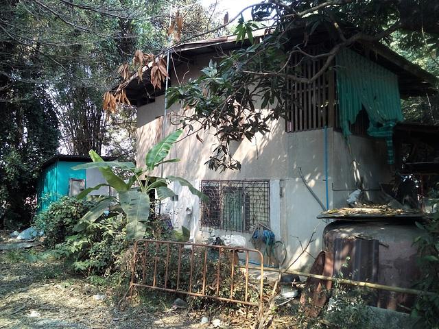 Architecture ombragée / Shady thaï architecture