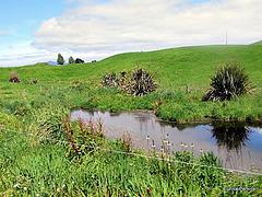 Farm Pond.