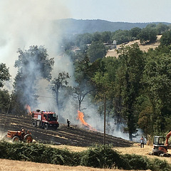 Our countryside burns