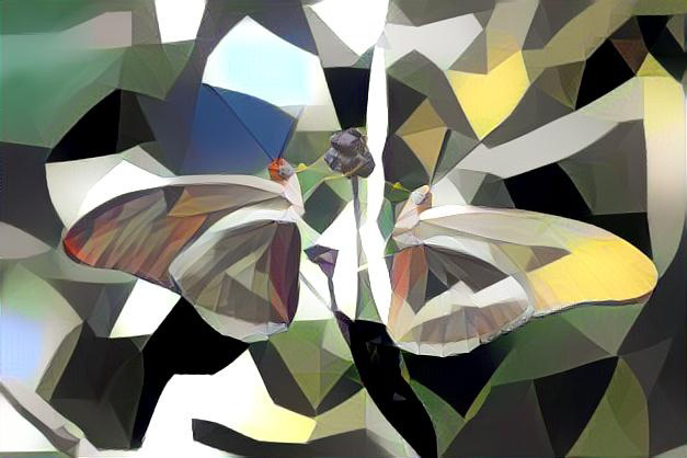 **polygons Two Julia Butterflies final