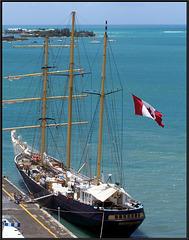 Guadalupa: con questo bel veliero canadese Pointe-à-Pitre ci augura buon viaggio per il rientro in Europa