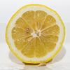 Lemon Slice 062216-001