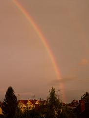 Regenbogen bei untergehender Sonne