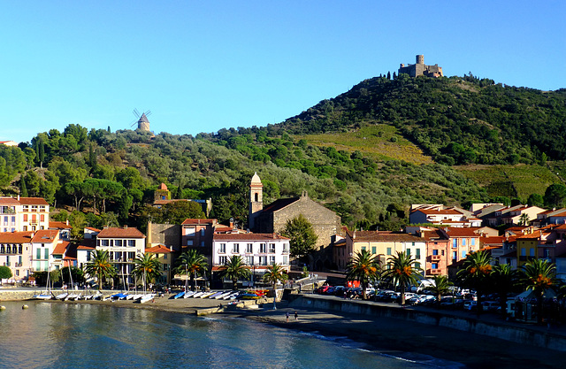 FR - Collioure - View towards Fort Saint Elme and Windmill