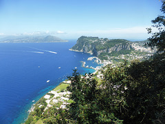 Blick vom Garten der Villa San Michelle  auf Capris Hafen Marina Grande