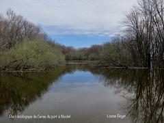 Parc écologique de l'anse du port à Nicolet