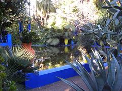 Jardin Majorelle !