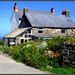 Cornish farmhouse (and of course Cornish cream teas and b&b)