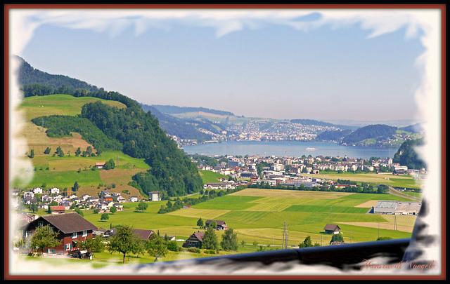 Auf der Stanserbahn ausblick auf den Viewaldstätersee  nach Luzern