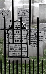 Jewish Cemetery in Elburg (the Netherlands)...