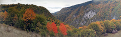 Autumn in the canyon of Ugar river (PiPs)