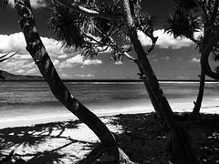 Lovely Lombok
