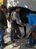 Horse shodding at Jerez