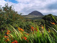 ¤ Hiking Diamond Hill |  Connemara | IRELAND