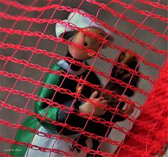 En cage ...