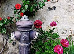 spríng hydrant