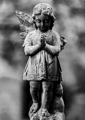 Wee Angel with Missing Wing