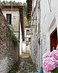A street in Goricë