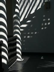 stripey afternoon