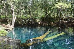 Dominican Republic, Blue Lake (Lago Azul) in the Jungle of Eastern Haiti