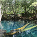 Dominican Republic, Blue Lake (Lago Azul) in the Jungle of Eastern Haiti