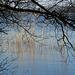 Natur am Wasser