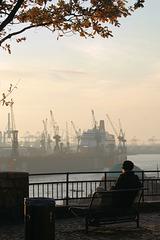 HFF: Der Hamburger Hafen vom Stintfang