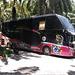 Chokmalidang bus (Thaïlande)