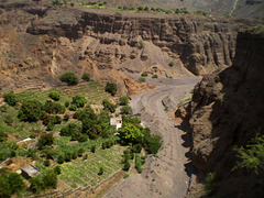 Agriculture in the canyon.