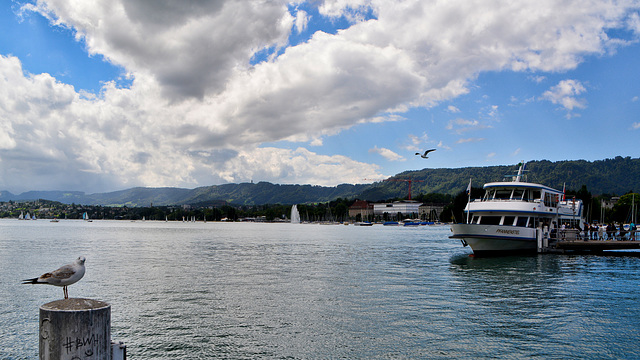Switzerland , Lake Zürich