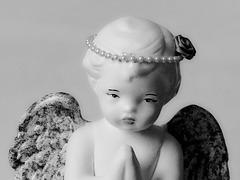 Douceur angélique…..
