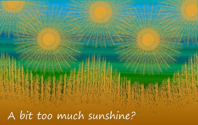 A bit too much sunshine