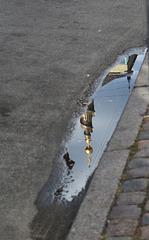 Copenhagen puddle