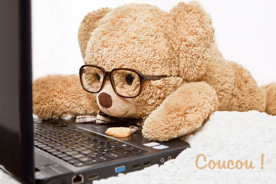 Funny bear in glasses lying works at the computer