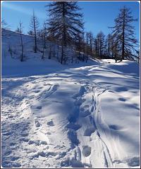 Il Covid ha desertificato anche la montagna - il 'virus' non teme il freddo e la neve, ma neppure l'inquinamento !