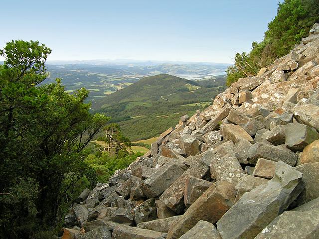 Mt. Holmes slope with basalt fragments - Mount Cargill Scenic Reserve