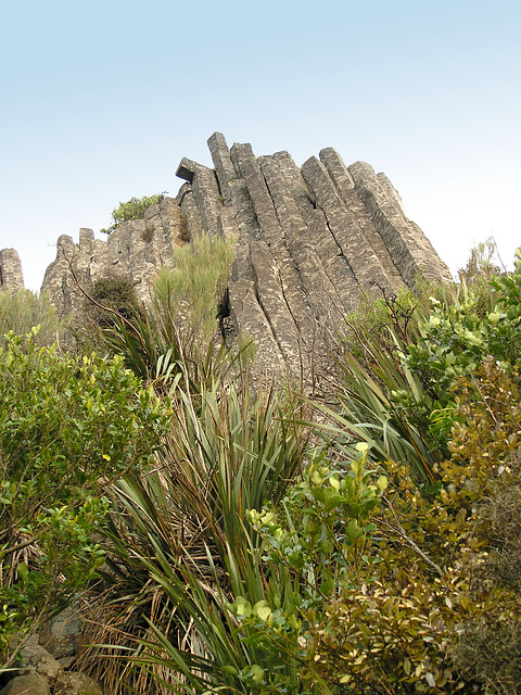 Basalt formation on the top of Mt. Holmes - Mount Cargill Scenic Reserve