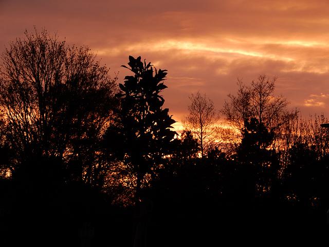 ce soir au coucher du soleil ƹ̵̡ӝ̵̨̄ʒ