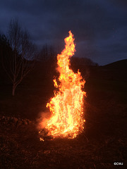 New Year's Day Bonfire
