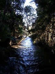 Waikoropupu