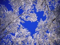 Verlaine : Le Ciel est par-dessus le toit____EXPLORE