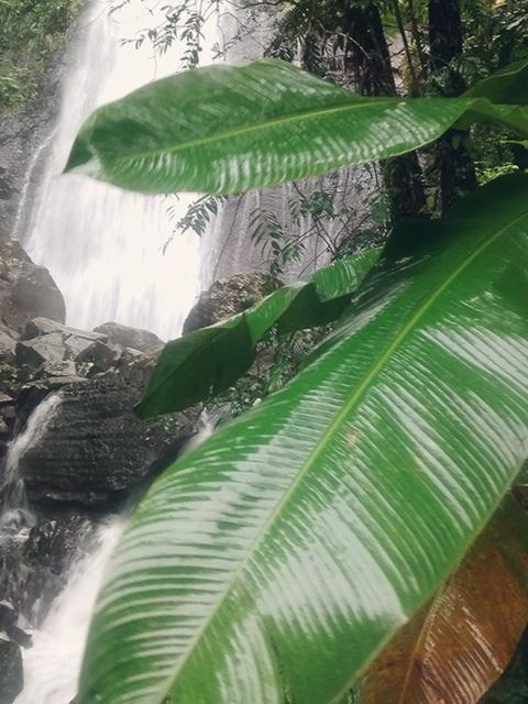 misty waterfall2