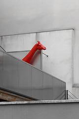 Girafe de terrasse