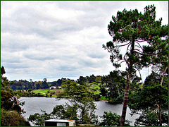 Overlooking The Waikato River.