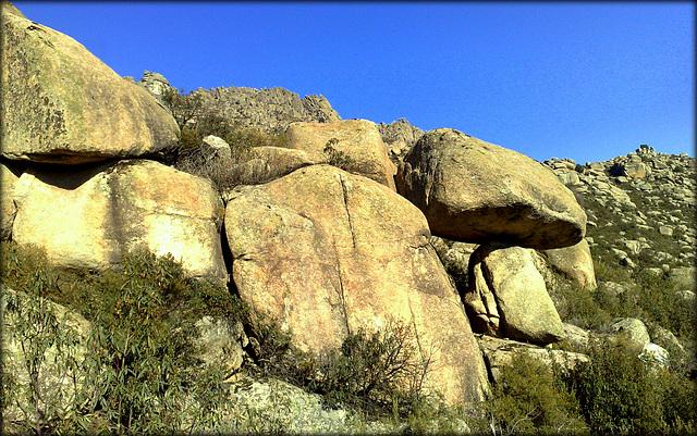 Grandpa Mushroom Rock.