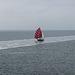 20140906 022Hw [NL] Überfahrt, Terschelling