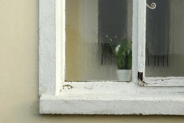 Irish Windows 01