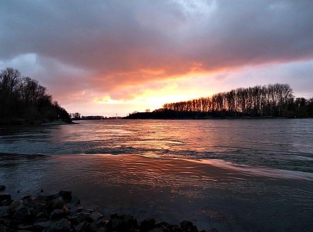 Premium-Platz am Rhein